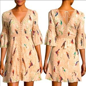 Anthropologie Foxiedox Hummingbird Dress